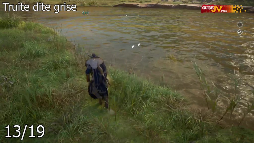 assassins-creed-valhalla-guide-emplacement-poisson-belle-prise-00063